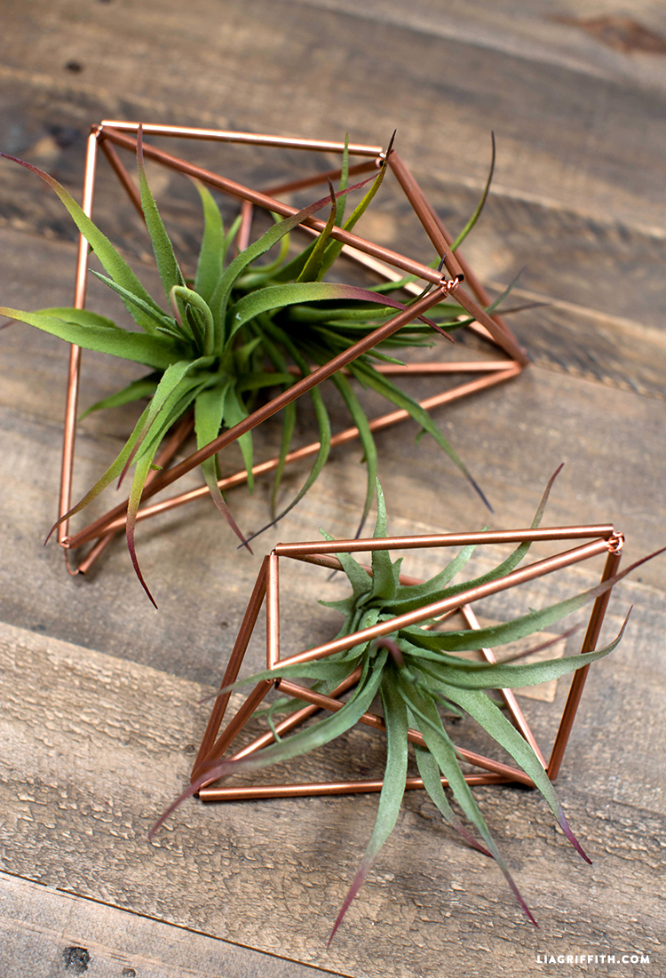 Diy Copper Plant Hangers Lia Griffith